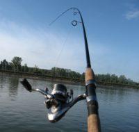 Как выбрать спиннинг для ловли щуки и окуня — советы новичкам